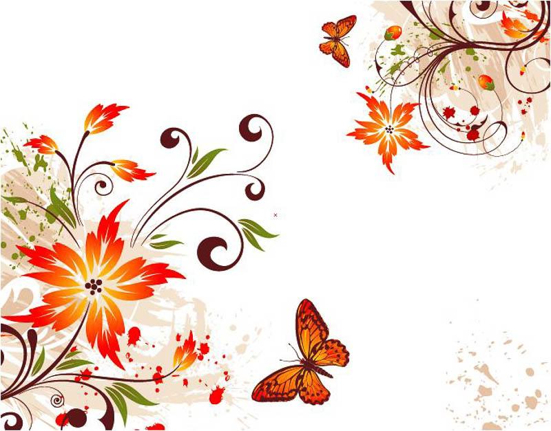 Узоры бабочки цветочки